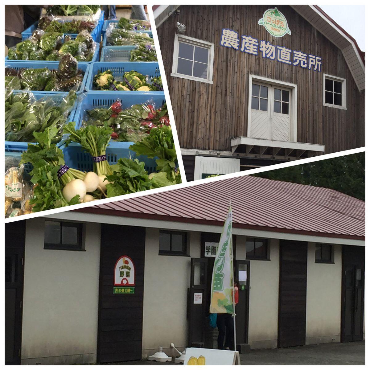『八紘学園 野菜直売所』 札幌近郊 ドライブで行ける新鮮野菜が買える場所。ソフトクリームがおいしい!