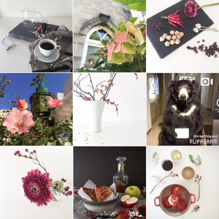 Instagramで世界とつながる!英語、写真が苦手な人向け、インスタの楽しみ方8選。