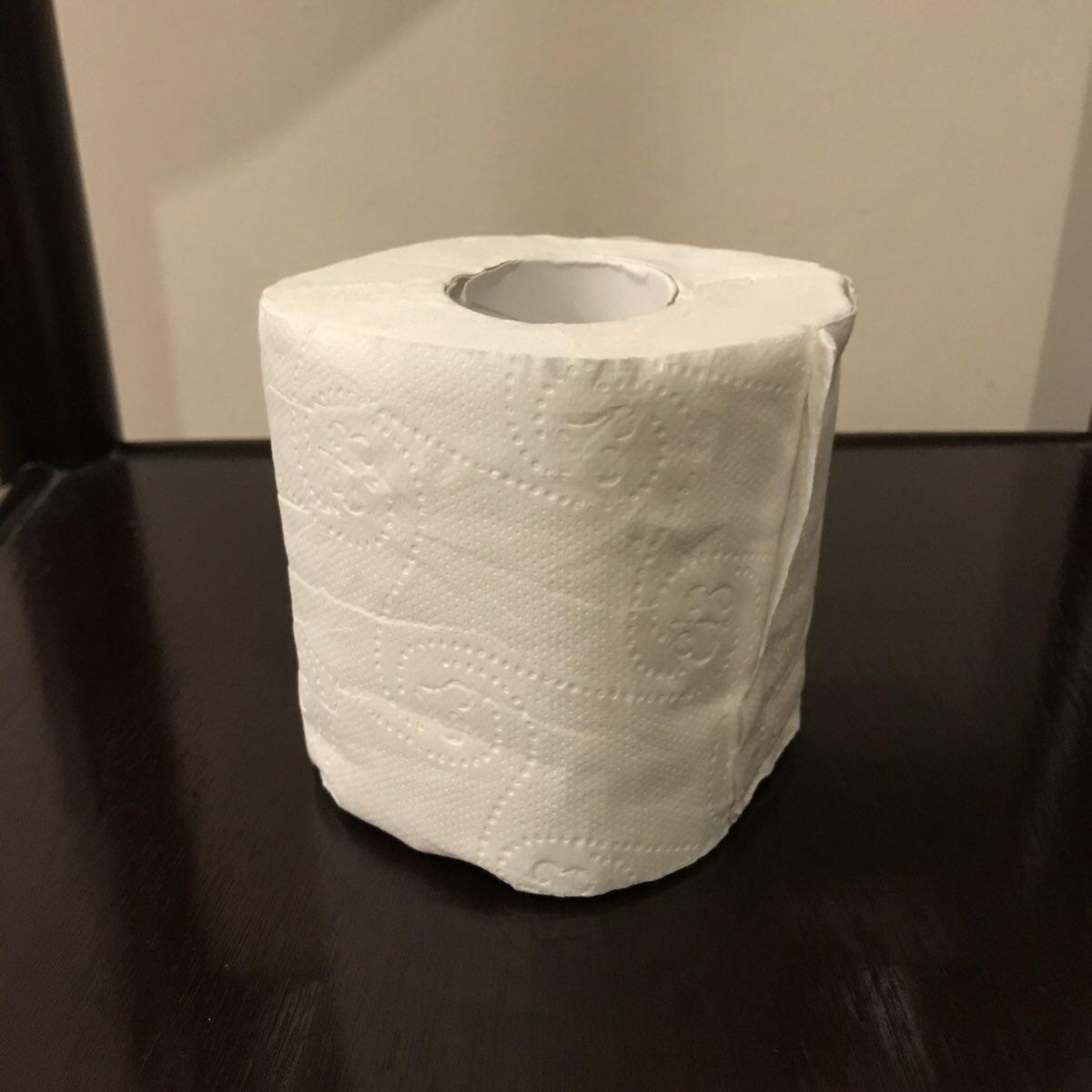 予想していなかったフィリピンのトイレ事情。トイレットペーパーは流せない?持ち歩く?【セブ英語留学日記】